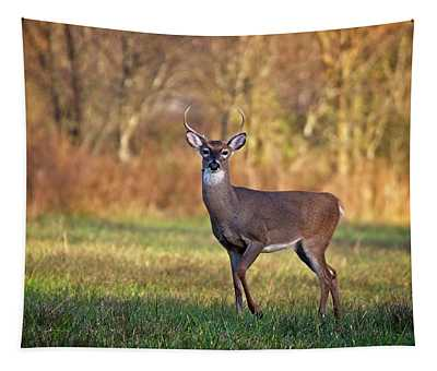 Young Buck Tapestry