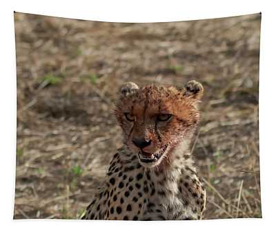 Young Cheetah Tapestry