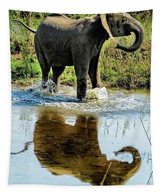 Young Elephant Playing In A Puddle Tapestry
