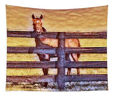 Young Kentucky Thoroughbred Tapestry