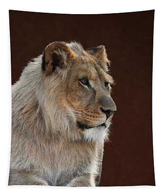 Young Male Lion Portrait Tapestry