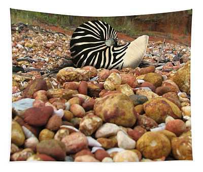 Zebra Nautilus Shell On Bauxite Beach Tapestry