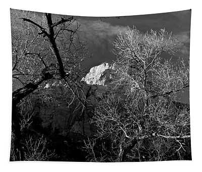 Zion Canyon The Grotto Cottonwoods Tapestry