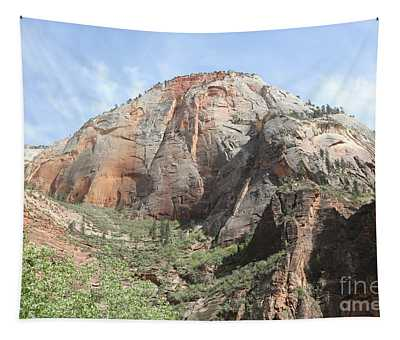 Zion National Park Natures Best Utah  Tapestry