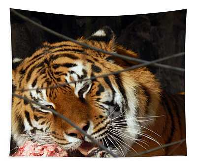 Zoo Animals In Cages And Aviaries Tapestry