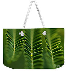 A Green Drop Weekender Tote Bag by Michelle Meenawong