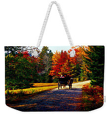 Weekender Tote Bag featuring the photograph  Acadia National Park Carriage Trail Fall  by Tom Jelen