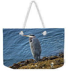 Weekender Tote Bag featuring the photograph  Blue Heron On A Rock by Eti Reid