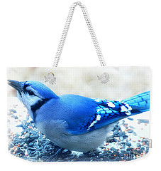Bright Blue Jay  Weekender Tote Bag