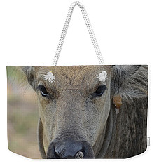 Buffalo Weekender Tote Bag by Michelle Meenawong