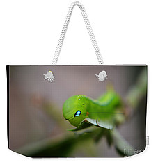 Caterpillar Weekender Tote Bag by Michelle Meenawong