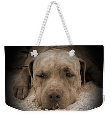 Weekender Tote Bag featuring the photograph  Don't Disturb Me by Michelle Meenawong