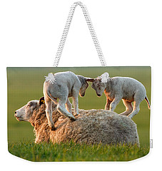 Leap Sheeping Lambs Weekender Tote Bag by Roeselien Raimond