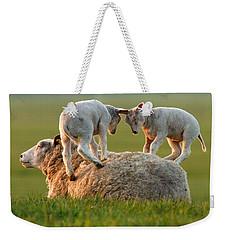 Leap Sheeping Lambs Weekender Tote Bag