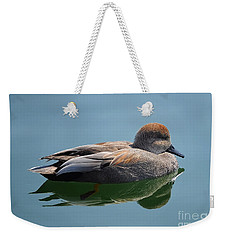 Weekender Tote Bag featuring the photograph  Male Gadwall Duck  by Elaine Manley