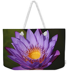 Purple Water Lily Weekender Tote Bag by Karen Silvestri