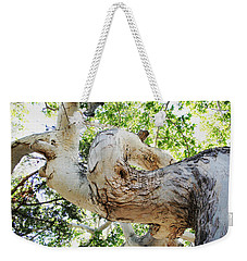 Sycamore Tree's Twisted Trunk Weekender Tote Bag