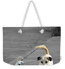 Two Of A Kind Weekender Tote Bag by Michelle Meenawong