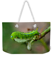 Wet Caterpillar Weekender Tote Bag by Michelle Meenawong
