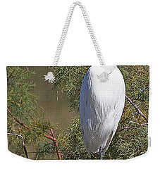 Weekender Tote Bag featuring the photograph  Yellow Foot Snowy Egret On Perch by Tom Janca