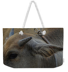 Young Buffalo Weekender Tote Bag by Michelle Meenawong