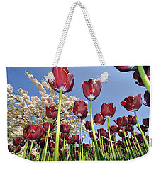 Weekender Tote Bag featuring the photograph 090416p029 by Arterra Picture Library