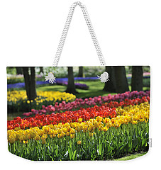 Weekender Tote Bag featuring the photograph 090811p123 by Arterra Picture Library
