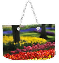 Weekender Tote Bag featuring the photograph 090811p124 by Arterra Picture Library