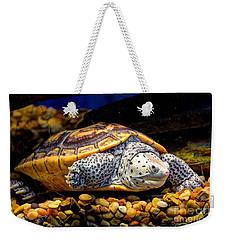 Sea Turtle Weekender Tote Bag by Savannah Gibbs