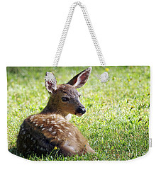 A Fawn On The Lawn Weekender Tote Bag