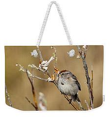 American Tree Sparrow Weekender Tote Bag by Doug Lloyd