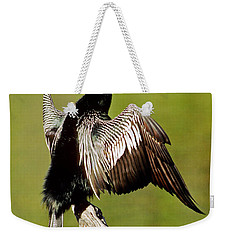 Anhinga Anhinga Anhinga Drying Plumage Weekender Tote Bag by Millard H. Sharp