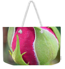 Weekender Tote Bag featuring the photograph Anticipation by Deb Halloran