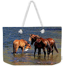 Arizona Wild Horses On The Salt River Weekender Tote Bag