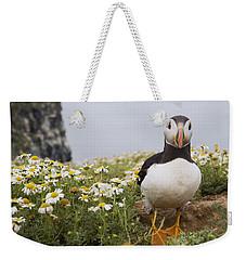 Atlantic Puffin In Breeding Plumage Weekender Tote Bag