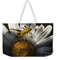 Australian Grasshopper On Flowers. Spring Concept Weekender Tote Bag