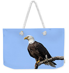 Bald Eagle 6 Weekender Tote Bag