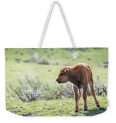 Weekender Tote Bag featuring the photograph Bison Calf by Michael Chatt