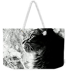 Weekender Tote Bag featuring the photograph Bo by Jacqueline McReynolds