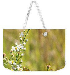 Butterfly In A Field Of Flowers Weekender Tote Bag