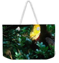 Chestnut-mandibled Toucan Weekender Tote Bag by Art Wolfe