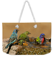 Colorful Bathtime Weekender Tote Bag by Myrna Bradshaw