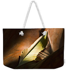 Weekender Tote Bag featuring the photograph Cycle Of Life by Yulia Kazansky