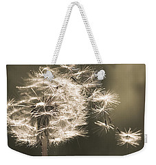 Weekender Tote Bag featuring the photograph Dandelion by Yulia Kazansky