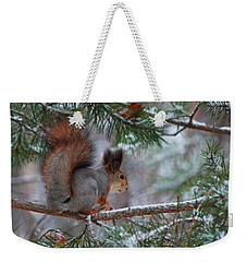 Eurasian Red Squirrel Weekender Tote Bag