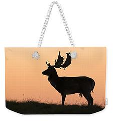 Fallow Deer Buck At Sunset Denmark Weekender Tote Bag by Duncan Usher
