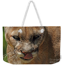 Weekender Tote Bag featuring the photograph Florida Panther by Meg Rousher