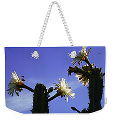 Flowering Cactus 4 Weekender Tote Bag