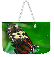 D5l15 Butterfly At Franklin Park Conservatory Weekender Tote Bag