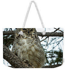 Weekender Tote Bag featuring the photograph Great Horned Owl by Michael Chatt